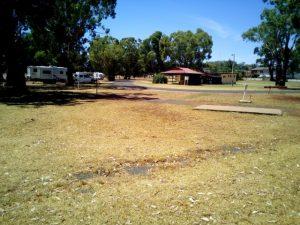 Dunedoo Caravan Park