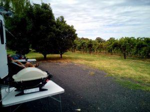 winery near dubbo