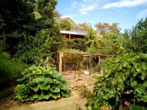 Huon farm house