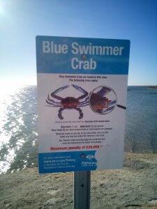 Ceduna Jetty Crabbing