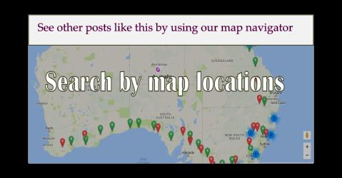 Map navigator