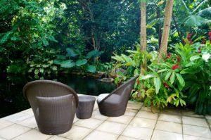 Hayman island Gardens