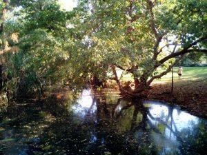 Timber Creek Roadhouse river