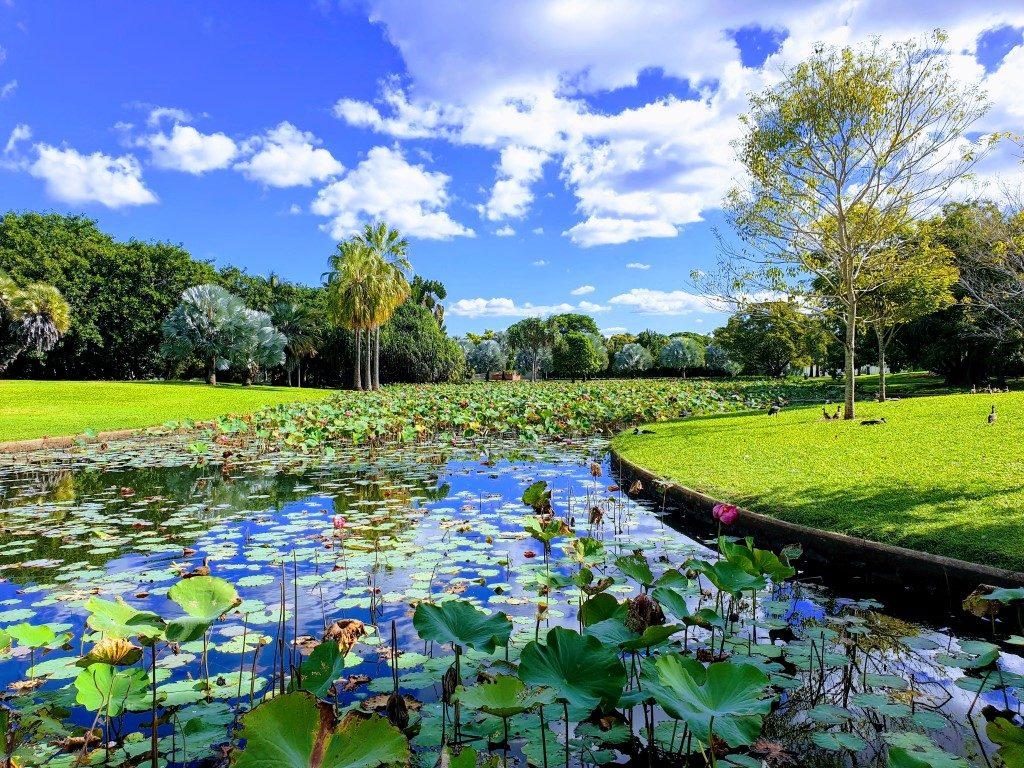 Townsville Botanical Gardens