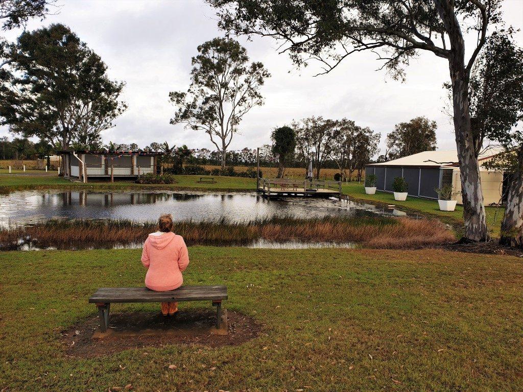 Cheery-Nomads- Kui park pond