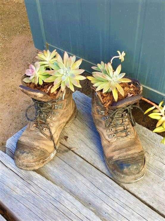 Kolonga-Camp old boots
