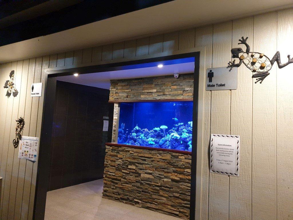 Big-4-helensvale-fish tank in toilet