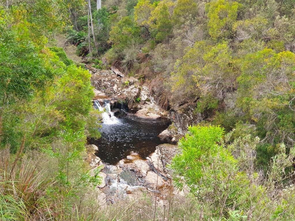 Halls Falls Tasmania