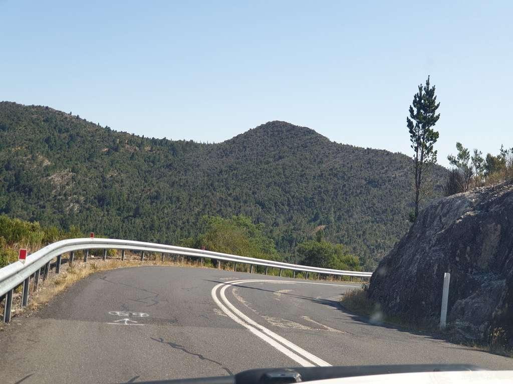 tassie road conditions