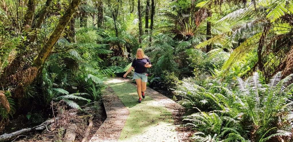 Hogarth Falls Strahen Tasmania walk in