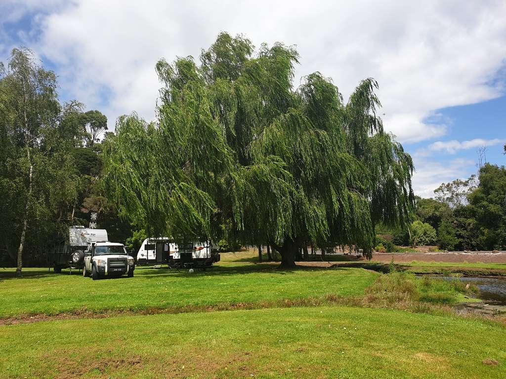 Tall timbers Smithton Tasmania RV camping
