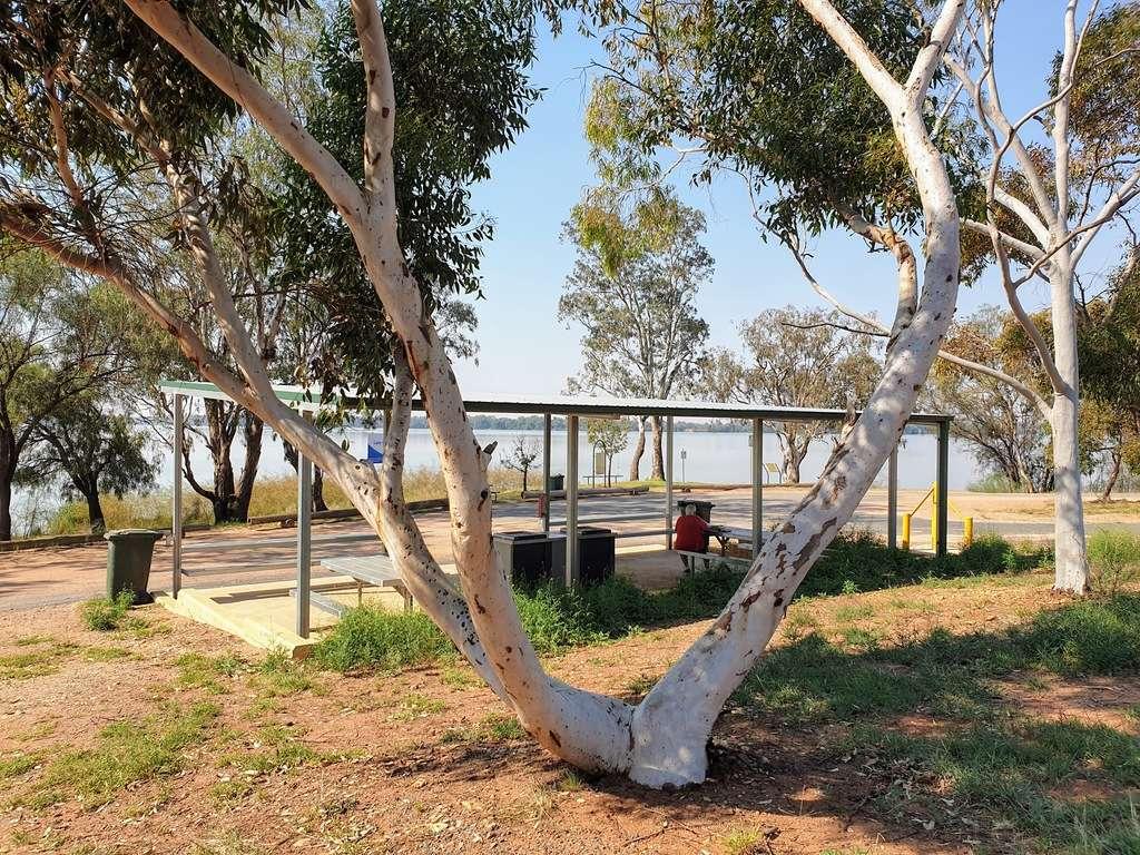 Lake Cargelligo nsw camping area dead mans camp